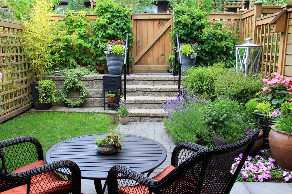 Beau Backyard Renovation Ideas
